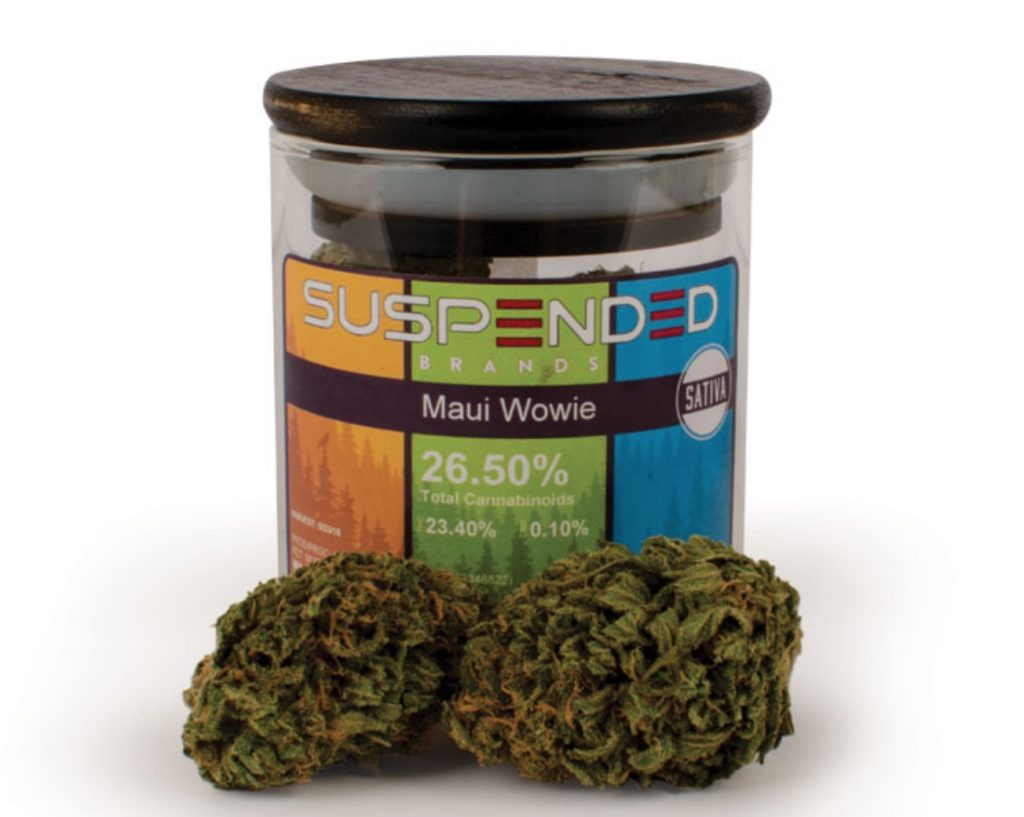 The Pungeant Maui Wowie Strain Is One Of The Most Classic Sativa Landrace Strains