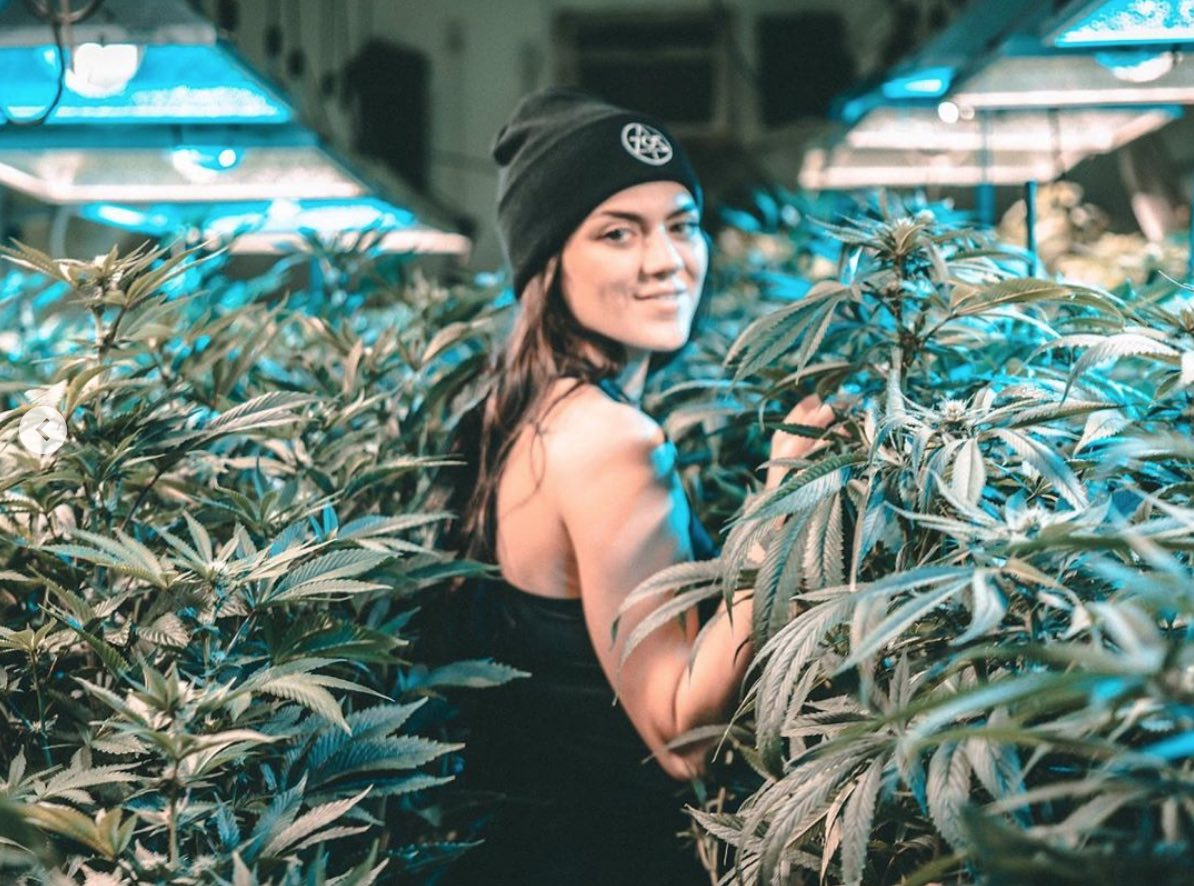 The Results Are In: April Budtender Picks Of The Month